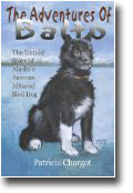 Balto Famous Husky