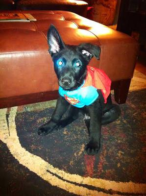 Super Fritz..a t-shirt from a doll that fit him when he was six weeks old