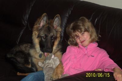 German Shepherd Phoenix and Katherine