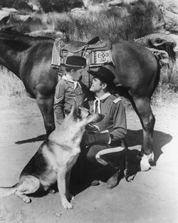 Rin Tin Tin image