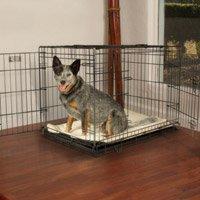 Crate Train a Dog