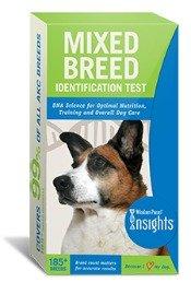 dog breed test