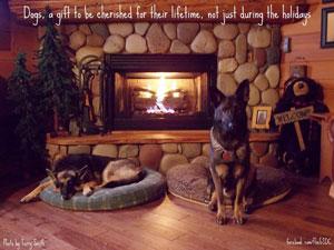 Nightmare Before Christmas Dog
