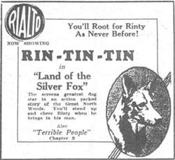 Rin Tin Tin Land of the Silver Fox